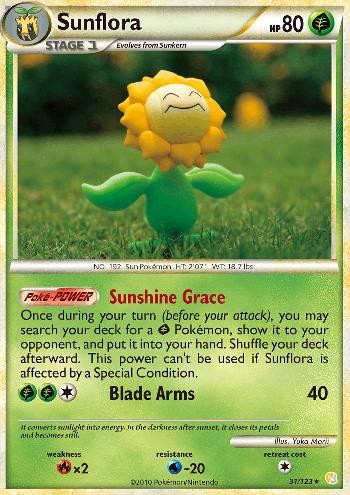 Sunflora (#31/124)